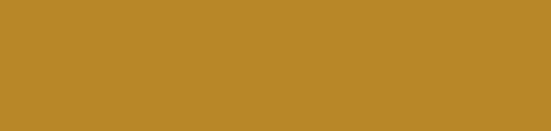 Napolyon Bistro & Bar Logo